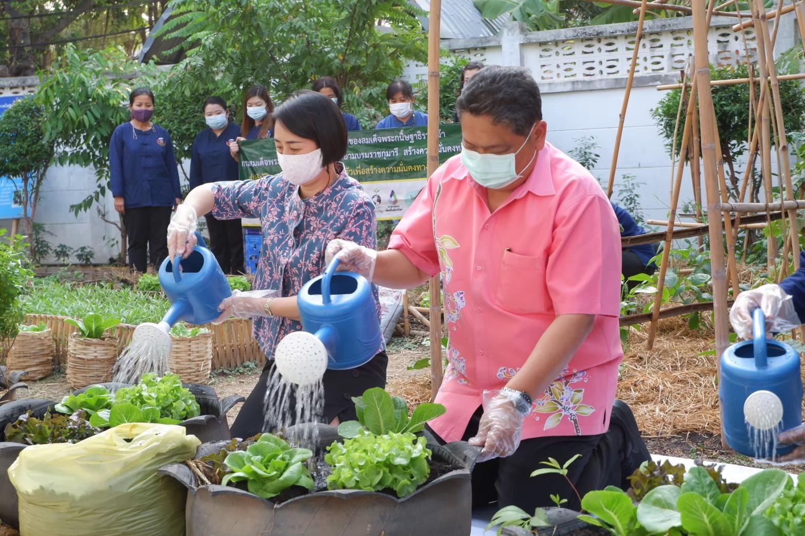 อธิบดีพช.เดินหน้าต่อรอบ 2 (ต่อเนื่อง) ชวนชาวไทยปลูกกระชาย-ฟ้าทลายโจร ขยายผลการดำเนินงานโครงการปลูกผักสวนครัว ด้วยพืชสมุนไพรไทย เพื่อป้องกันโรคติดเชื้อ แก่พี่น้องประชาชนทั่วประเทศ